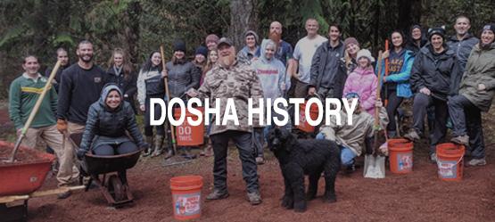 History of Dosha Salon Spa