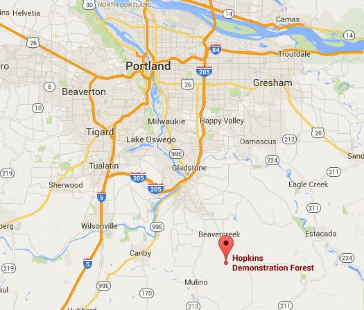 Google Maps: Hopkins Demonstration Forest