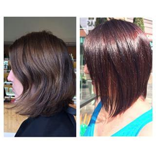Rich Aveda Color Dosha Salon Spa