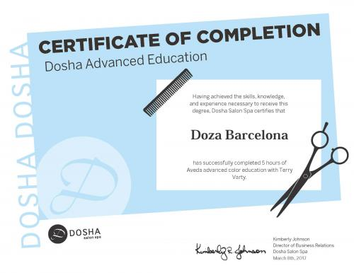 Dosha Salon Spa Master Stylist Advanced Education Aveda