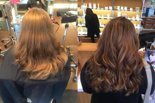 Brunette Hair Color Dosha salon Spa Aveda Color Highlights
